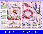 Tavole di fiori-65_35-jpg