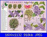 Tavole di fiori-70_27-jpg
