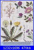 Piccoli schemi di fiori-15_59-jpg