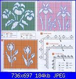 Tulipani-1%2520-7-punto%2520assisi-jpg