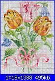 Tulipani-tulipani2-jpg