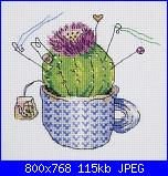 cactus-foto-4-jpg