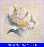 Isabelle Bard- Fiori-white-rose-foto-0-jpg