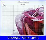 Isabelle Bard- Fiori-pink-rose-1-jpg