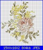 Schemi mimose-mimose-2-jpg