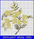 Schemi mimose-mimose-1-jpg