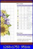 Girasoli-sunflower-2-jpg