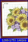 Girasoli-sunflower-1-jpg