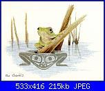 Sue Coleman - CS 314 - Frog-sue-coleman-cs-314-frog-jpg