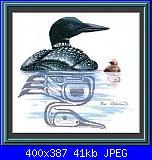 Sue Coleman - CS 4362 - Loon & Chick-sue-coleman-cs-4362-loon-chick-jpg