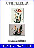 Ross Originals R68 - Sterlitzia-ross-originals-r68-sterlitzia-jpg