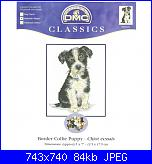 DMC - Best friends K5422 - Border Collie Puppy-dmc-best-friends-k5422-border-collie-puppy-jpg