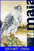 Anchor Maia 01036 Gyre Falcon-anchor-maia-01036-gyre-falcon-jpg