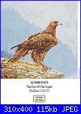 Anchor Maia 01076 The eye of the eagle-anchor-maia-01076-eye-eagle-jpg