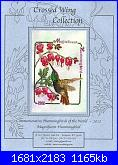 Crossed Wing Collection - Magnificent Hummingbird - 2011-magnificent-hummingbird-jpg