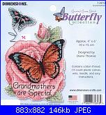 Dimensions 72893 - Grandmothers-cover-jpg