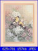 Stefy Palma - Fiori-fiori-_-004-jpg