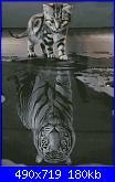 Chimera - I am a Tiger-00-jpg