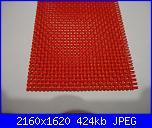 cerco  plastic canvas-dsc01327-jpg