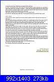 Orsetti amigurumi-0015-jpg