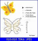 coccinelle, api, insetti e lumache-64130_518065248232531_495638459_n%5B1%5D-jpg