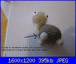 tartarughe e rane-tarta-2-jpg