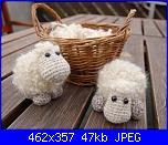 mucche e pecore-pecorella-jpg