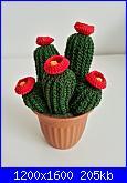 Fiori e piante amigurumi-pianta-grassa-fiori-rossi-jpg