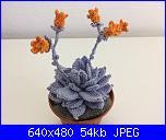 Fiori e piante amigurumi-echeveria-jpg