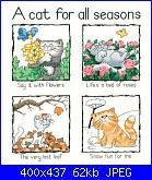 "Gatti: ""Home is where the cat is"" e ""A cat for all season""-cat-all-season-jpg"