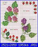 cerco schemi frutti di bosco-more-e-lamponi-2-jpg
