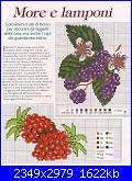 cerco schemi frutti di bosco-more-e-lamponi-1-jpg
