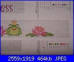 cerco schema ranocchia-p1020006-jpg