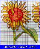 Schemi piccoli fiori-schema-punto-croce-girasole%5B1%5D-jpg