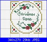 "Schemi da ""Victoria Samplers""-christmas_rose1-jpg"
