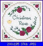 "Schemi da ""Victoria Samplers""-christmas_rose-jpg"