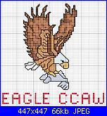 Eagle (aquila)-aquila2-jpg