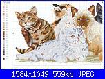 Sottoporta Gatti-1046676053656-jpg