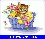 gatto nella ghirlandina-gattino-cestino-jpg