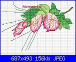 Cerco schema fiore anthurium-anthurium-rosa-ele-jpg