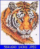 Cerco schema leggibile tigre-449562736-jpg