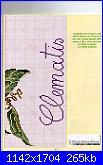 cerco schemi di ciclamini e ranucoli-img016-jpg