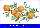 cerco schema ramo di arance-agrumi-7-foto-jpg