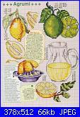 cerco schemi limoni-137641263615024886-jpg