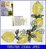 cerco schemi limoni-am_91704_1407844_553579-jpg