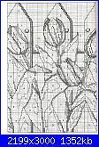 tulipani-img083_-jpg