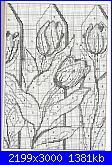 tulipani-img084_-jpg