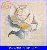 Cerco schema DMC - Isabelle Bard - Yellow Rose  bk601-dmc-xc1041-white-rose-1-jpg