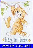 Schemi gatti-gato-en-arbol-1-jpg