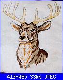 Cerco schema cervo-038_animal_middle-jpg